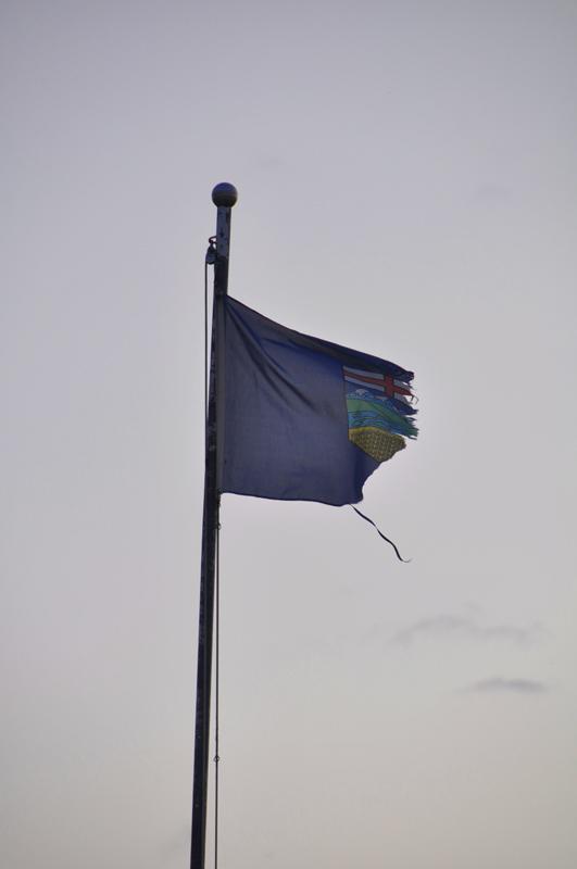 torn-alberta-flag