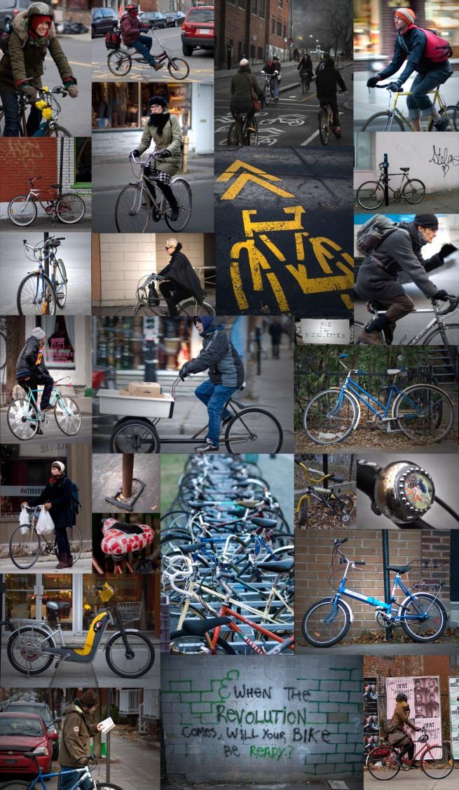 bikeology_2
