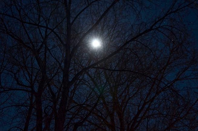 moonlight-over-lake-Scugog