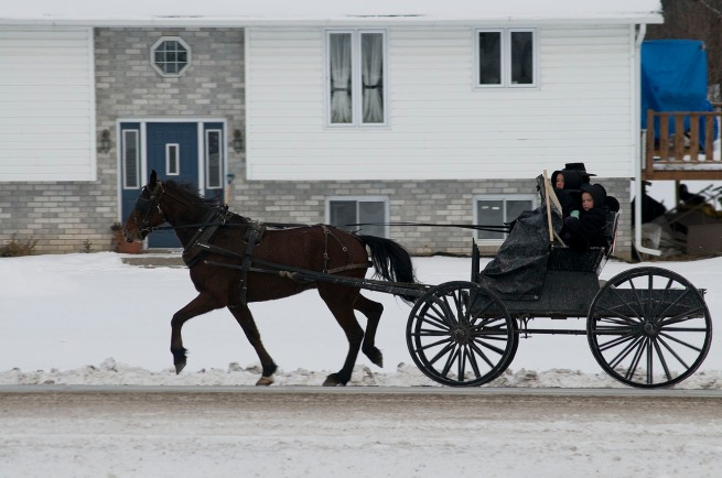 ontario-amish-near-ivanhoe003