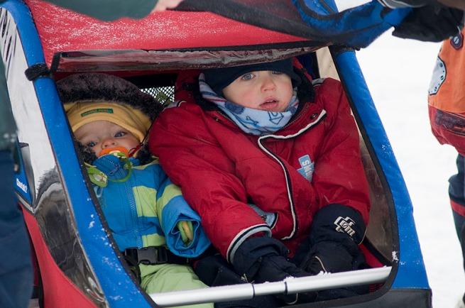 babies-in-buggy