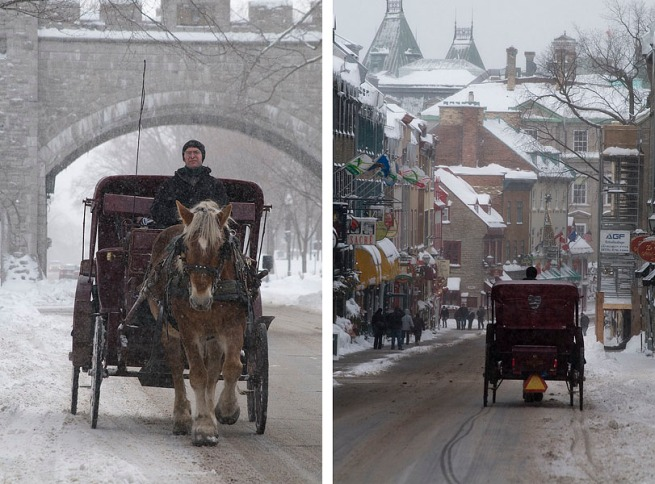 horse-drawn-carriage-quebec-city
