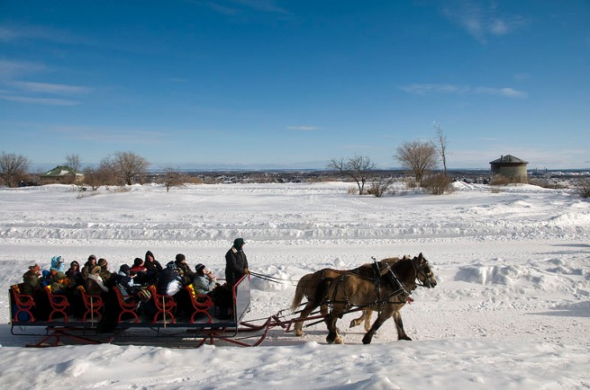 horse-drawn-sled