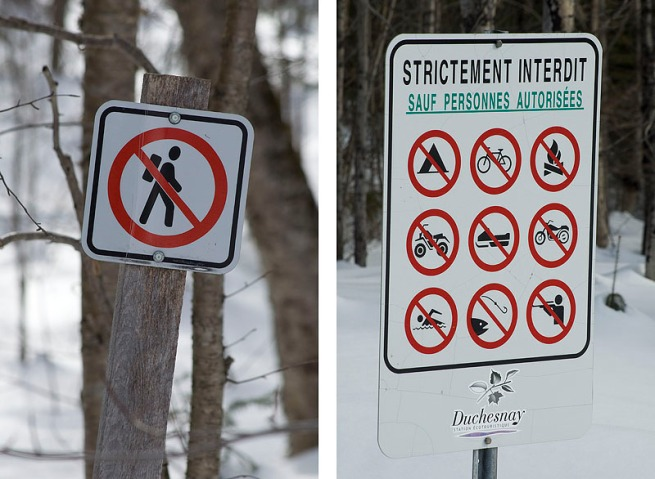 signs-in-the-forest