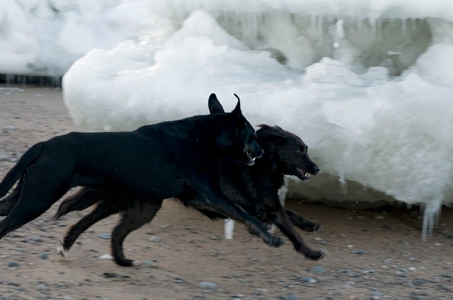 bo-and-mya-playing-on-a-sandy-beach