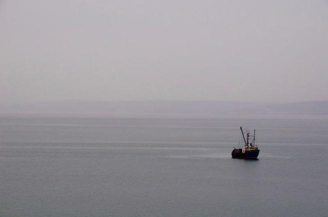 scallop-boat-near-digby