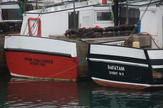 scallop-boats1