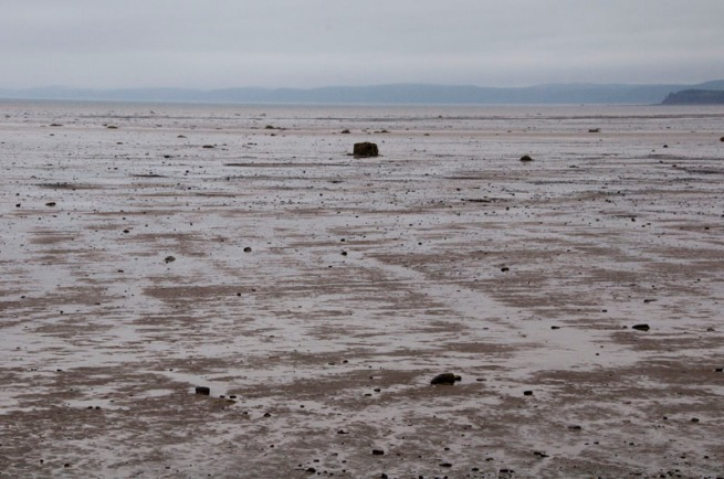 bay-of-fundy-low-tide-near-clare