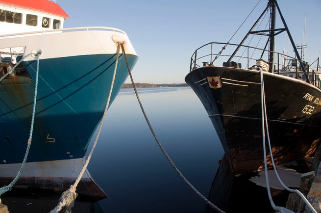 boats-at-the-wharf-shelburne