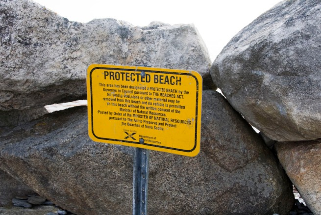 cape-sable-island-protected-beach-0000