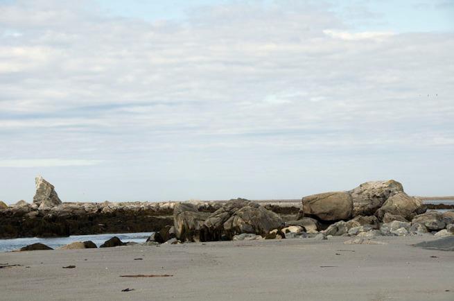cape-sable-island-the-hawk-beach