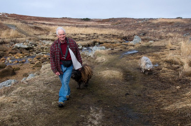 Ed lifes in Prospect and walks his Italian sheep dogs daily alone the shoreline in Prospect.