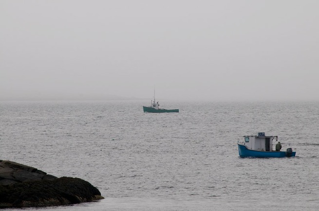 Fishing boats zig zag back in forth just off the shore of Prospect.