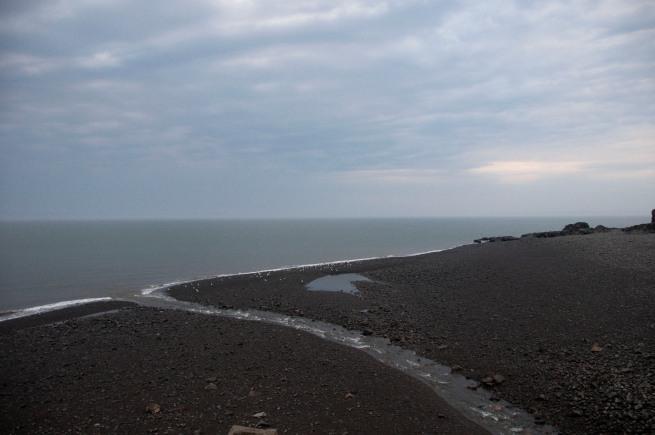 halls-harbour low tide