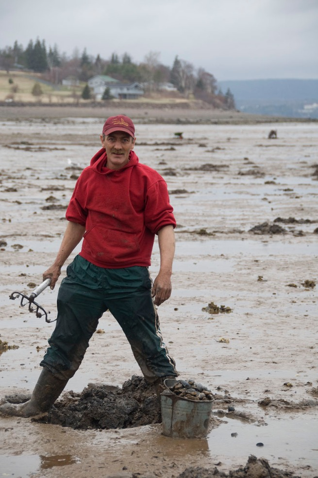 mark-jordan-digs-clams-at-smith-cove-near-digby