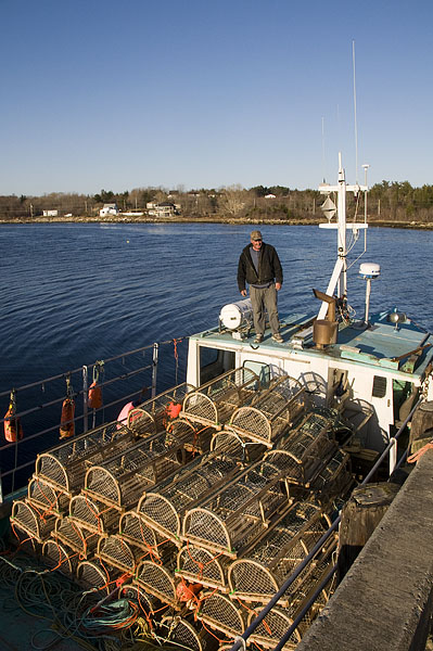 new-lobster-traps
