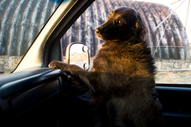 on-assignment-mya-in-front-seat3