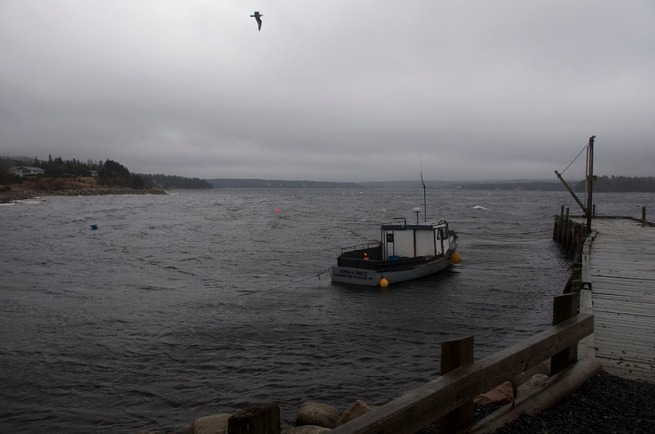 rays-fishing-boat