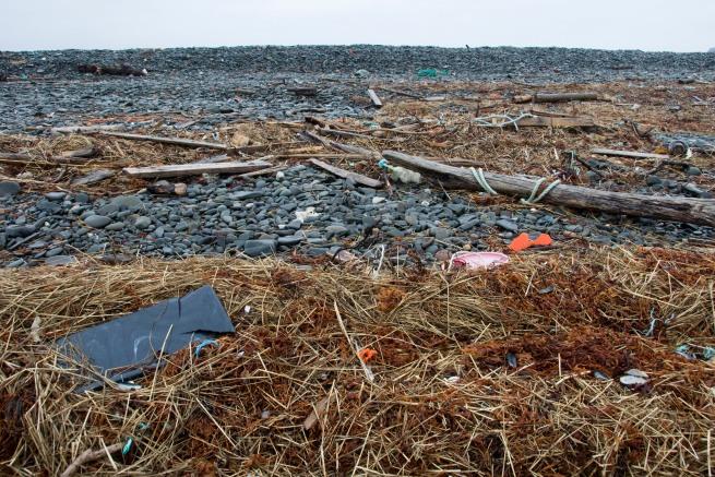 trash-on-beach27