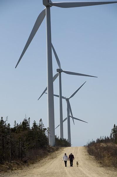 windmills-west-pubnico