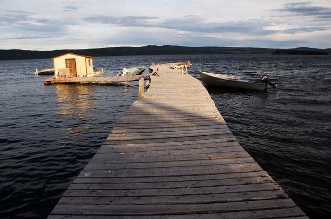 dock in springdale