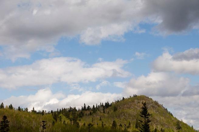 hills near badger
