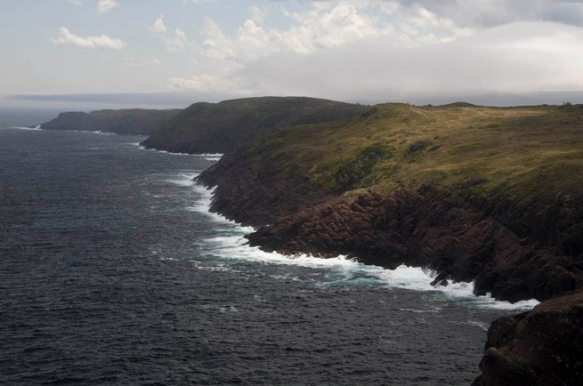 cape spear looking west