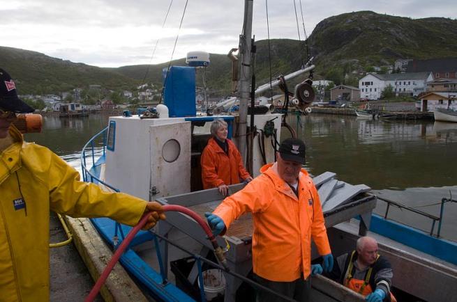 fishing team in pettys cove