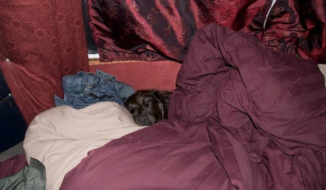 mya tucked into bed