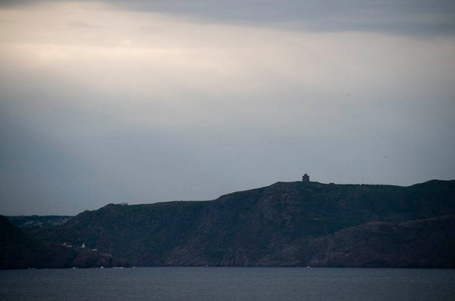 signal hill from cape spear