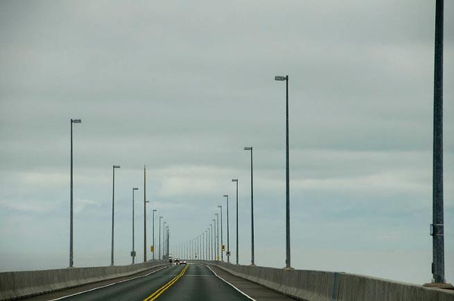 the bridge 7