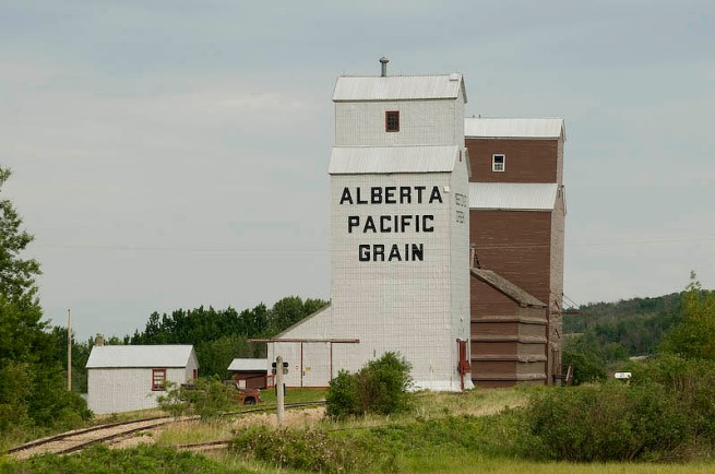 a drive in the alberta countryside 19