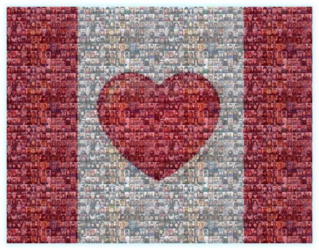 heart_flag